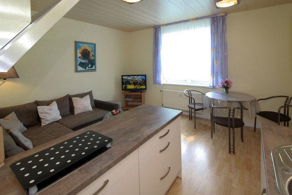 Wohn-Essraum mit Couch und Essbereich