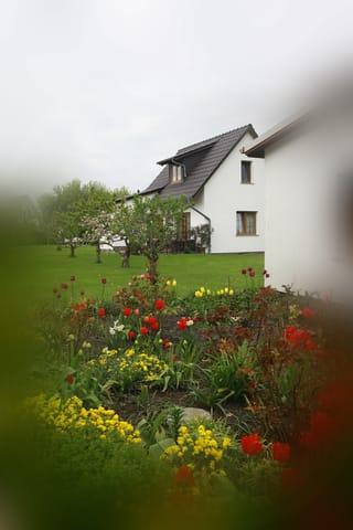 Haus Waterkant umgibt ein wunderschöner Garten