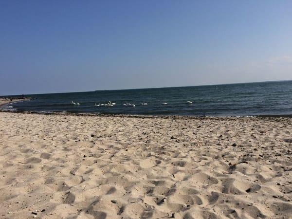 Strand des Ostseebades Baabe