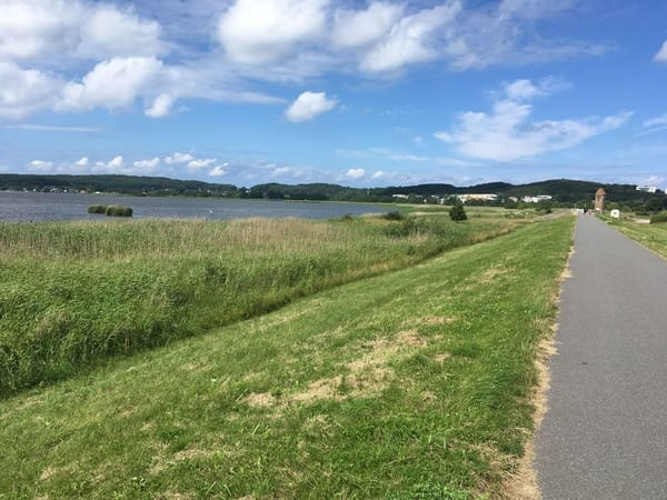 Baaber Deich und Selliner See- hier können sie gut mit dem Hund spazieren