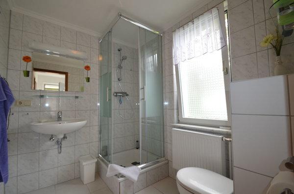 Bad mit Dusche , Handtuchständer, Föhn , neue Sanitäre Anlagen , Mückenschutz im Fenster