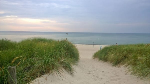 Der Weg zum schönen Dierhagener Strand