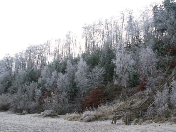 Winter an der Steilküste