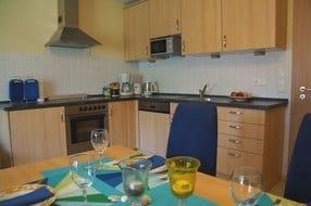unsere Küche - komplett eingerichtet - kleines Gefrierfach, Mirkowelle, Geschirrspüler, Tassimo, Wasserkocher usw.