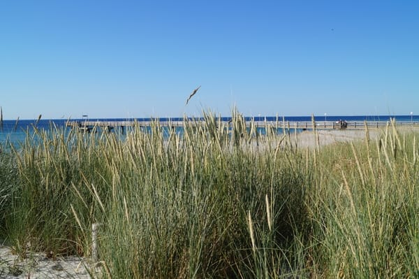 Natur geniessen im Ostseebad Rerik