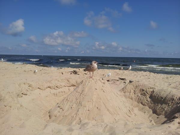 feinsandiger breiter Strand