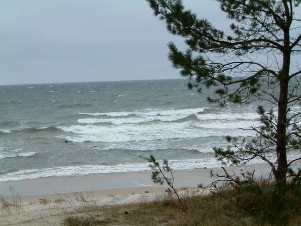 Ostseewellen brausen an den Strand...
