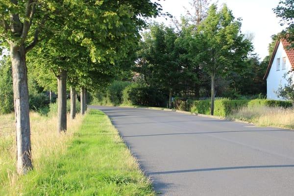 """Die """"Neue Straße"""" in Waase"""