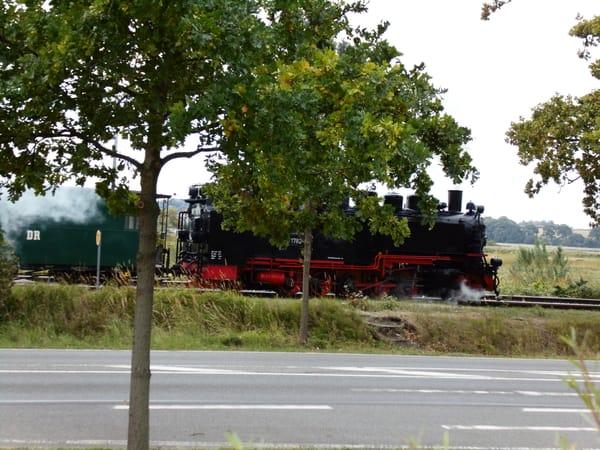 Mit dem Rasenden Roland über die Insel Rügen