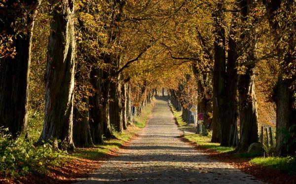 Auch im Herbst ist Rügen wunderschön.