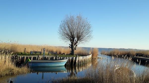 Fischerhafen Zempin am Achterwasser.