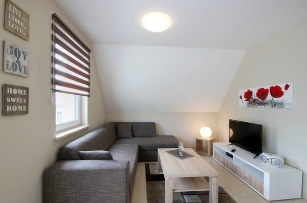 Wohnbereich mit Sitzecke, Flachbild-TV, WLAN, Blu-ray-Player (kl. DVD-Sammlung vorhanden) und CD-Player mit Radio