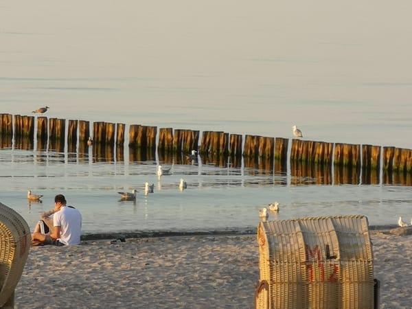 Der Tag neigt sich dem Ende. Urlauber und Möwen genießen den Sonnenuntergang