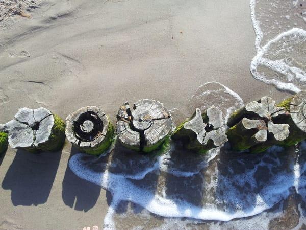 Buhnen am Strand