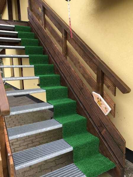 Hundefreundliche Außentreppe