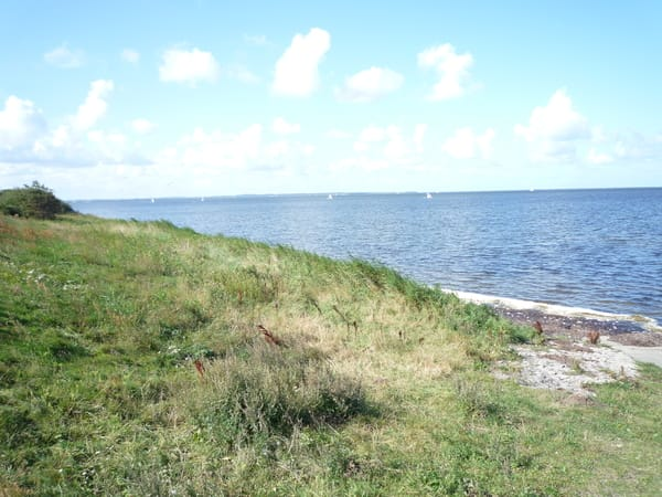 In 10-15 Gehminuten sind Sie am Wasser. Hier der Blick nach Hiddensee.