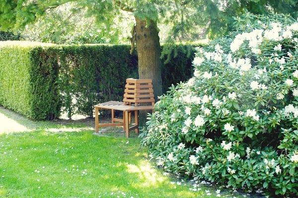 ein lauschiges Plätzchen im Garten
