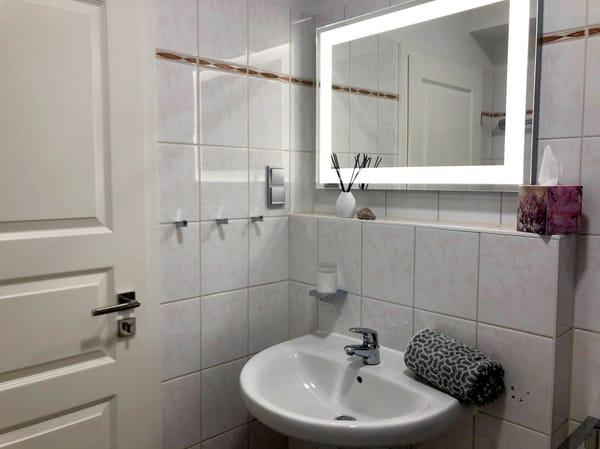 Das Bad verfügt über eine Dusche, WC, Waschtisch und Fön.
