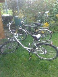 Fahrräder können Sie bei uns vor Ort mieten, fragen Sie einfach bei der Buchung