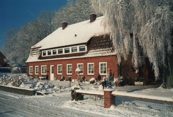Steinberghaff im Winter