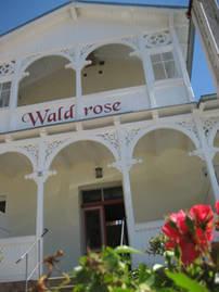 Pension Waldrose - Herzlich Willkommen