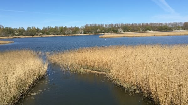 Spyker See ganz in der Nähe