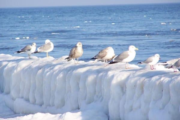 Winterspaziergang an der Ostssee