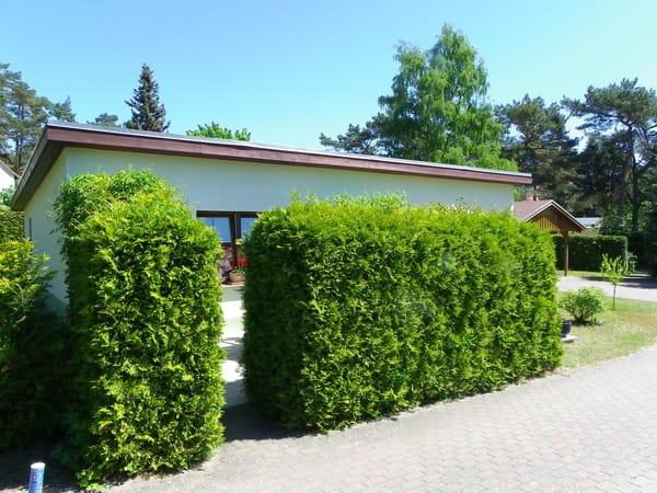 FH,,Usedom,,Bild 2 Terrasse grün eingerahmt