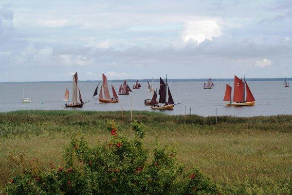 Beobachtung der Zeesbootregatter auf dem Bodden von den Ferienwohnungen aus