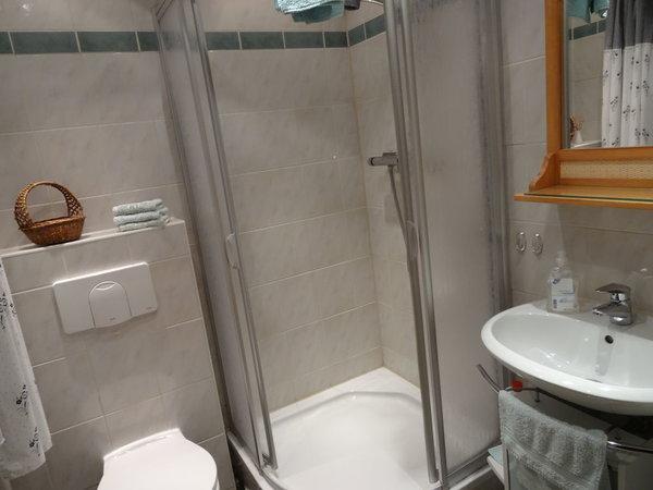 Bad mit Dusche und WC, Nutzung einer Waschmaschine ist gegen Aufpreis möglich