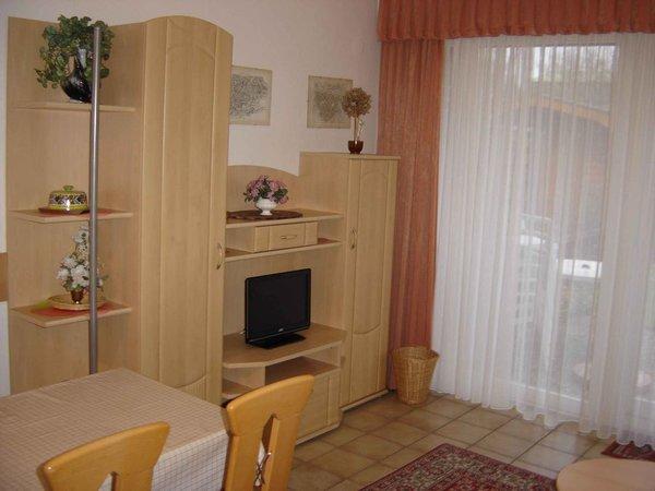 Sie sehen einen Teil des Wohnzimmers. SAT-TV ist vorhanden. Vor dem Fenster befindet sich die Südterrasse mit einem kleinen Garten.