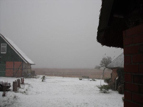 Blick vom Hof Richtung Bodden im Winter