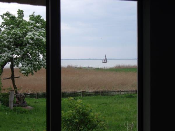 Fensterblick direkt auf den Saaler Bodden