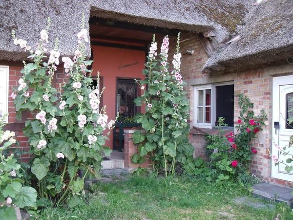 Rechts, im kleinen Haus, befindet sich die FEWO