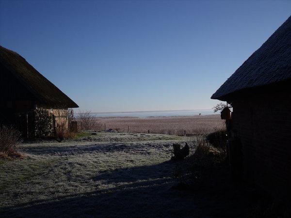 Ein Morgen am Saaler Bodden im Winter
