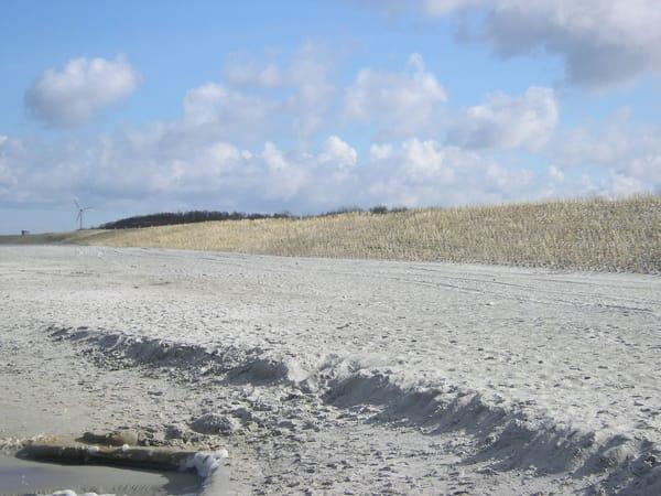 Strandbereich im Frühsommer