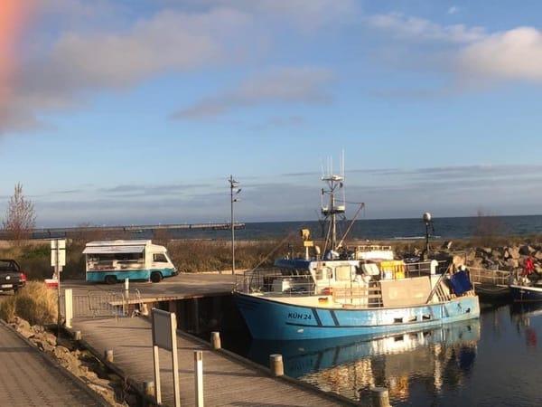Frischer Fisch direkt vom Kutter im Hafen