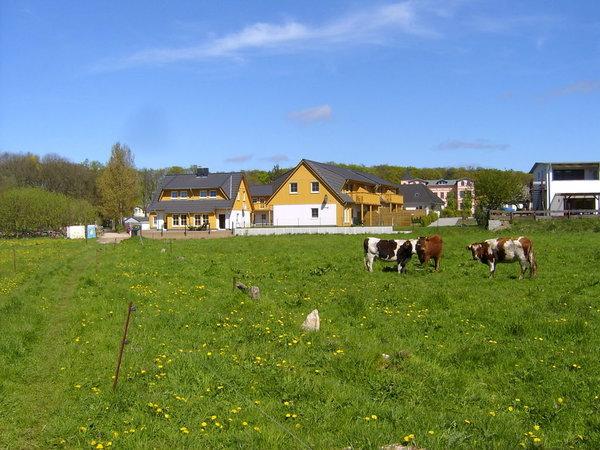 Ensemble Ferienhäuser Hauptstr.