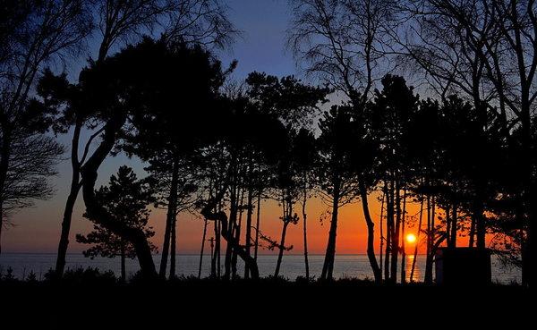 So beginnt ein schöner Tag! Sonnenaufgang am Balkon.