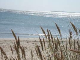 Strand Thiessow