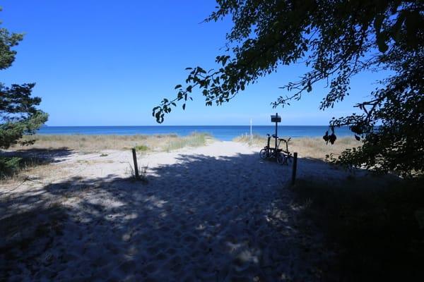 Ihr Strandzugang, am Garten vorbei und dann nur ein paar Meter durch Dünenwald