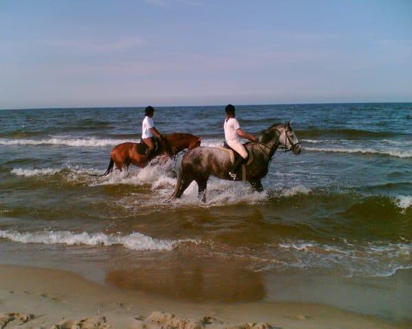 Reiter an der Ostsee