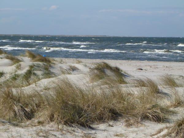Am Strand des Ostseebads Prerow