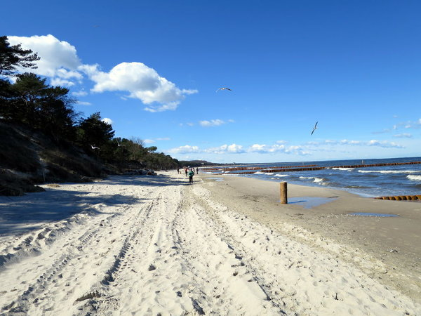 Strand im Frühling