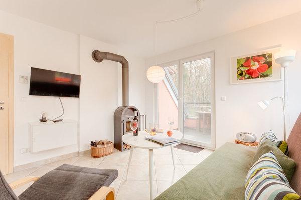 gemütlicher Wohnbereich mit Kamin Sat-TV und WLAN