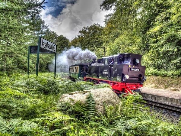 Der Rasende Roland. Ein schönes Erlebnis auf der Insel Rügen