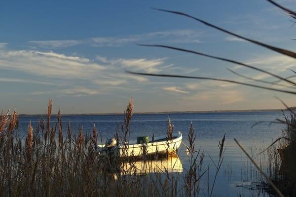 Ob belebtes Treiben am Strandaufgang oder Ruhe in der Natur, beides ist in Dierhagen möglich.