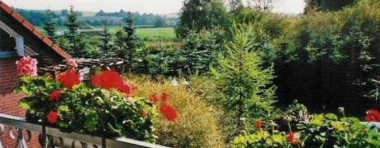 Der Blick auf den Garten.Demnächst ohne Balkon