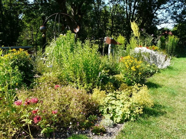 Staudenbeet im Garten