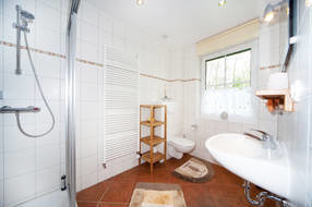 modernes Tageslichtbad mit Dusche